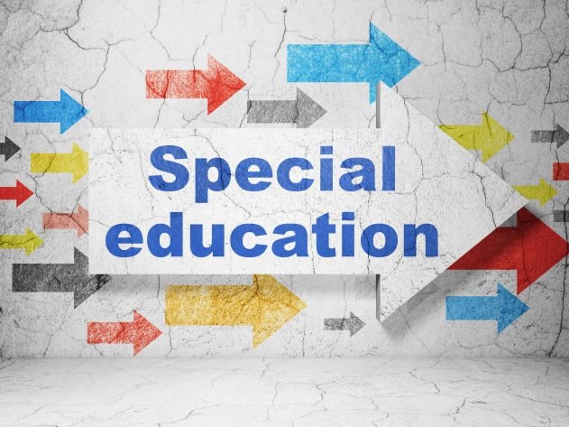 Learning concept: arrow with the words Special Education on grunge textured concrete wall background